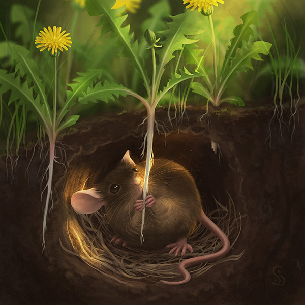 Earth Mouse (2019)